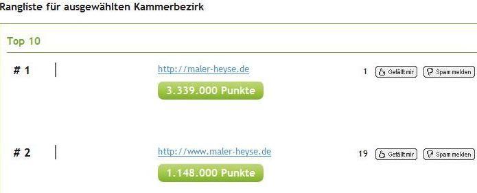 Bester Netzwerker 2012 - Heyse Rangliste Hannover