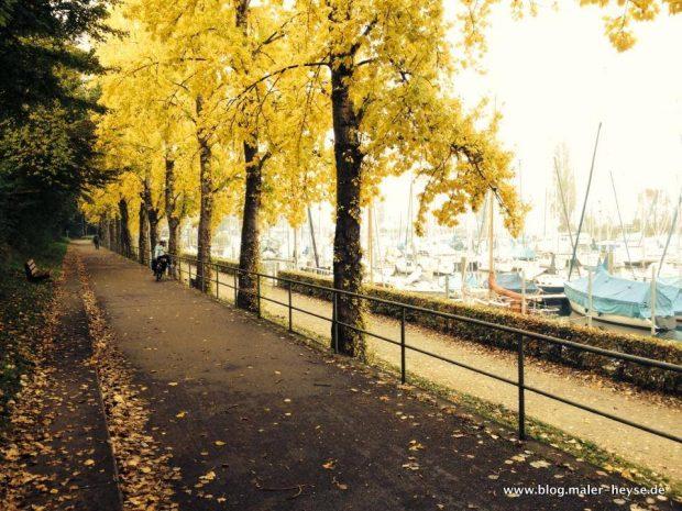 Farben, Herbst, Bäume, Weg, Maler Hannover